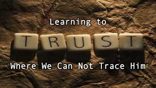 learnings_trust