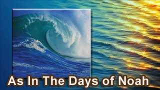 days_noah