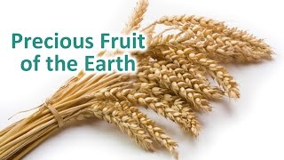 precious_fruit