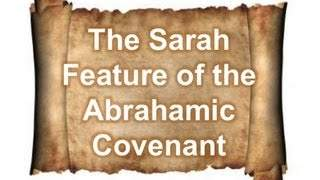 sarah_feature