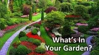 what_garden