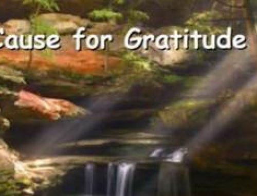 Cause for Gratitude – Tom Ruggirello