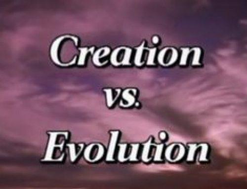 Creation vs Evolution – TV Program