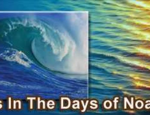 As In The Days of Noah – The Significance of The Biblical Flood in History and Prophecy – Allen Springer