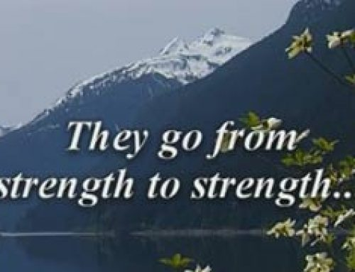 From Strength to Strength – Bill Gill