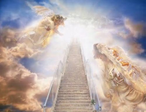 Do believers have a higher position than the angels in the kingdom of God?