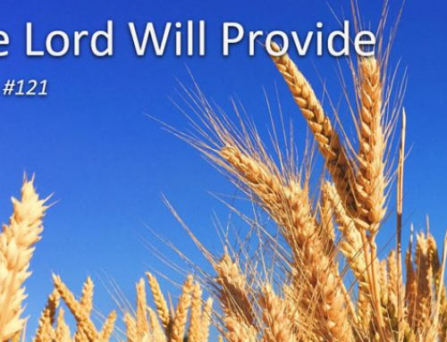 121. The Lord Will Provide (Song)