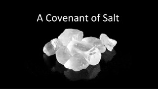 The Covenant of Salt – Chris Kuenzli