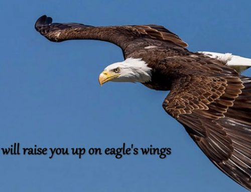 On Eagles Wings – Song