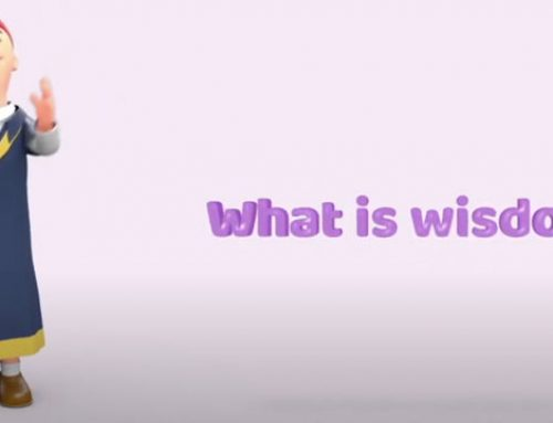 What is wisdom?
