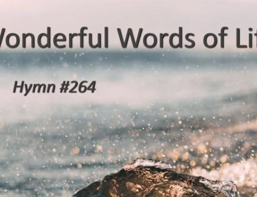 264 – Wonderful Words